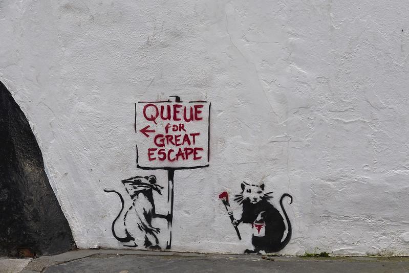 graffiti of queueing rats